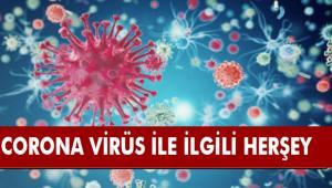 Yeni Coronavirüs ile ilgili merak edilen 9 soru 9 cevap