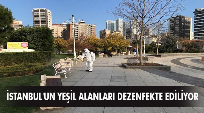 İSTANBUL'UN YEŞİL ALANLARI DEZENFEKTE EDİLİYOR