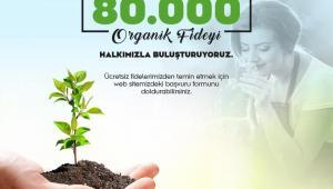 Geleceğimiz güzelleşsin diye 80 bin organik fide…