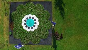 Srebrenica Çiçeği' yeniden hayat buluyor