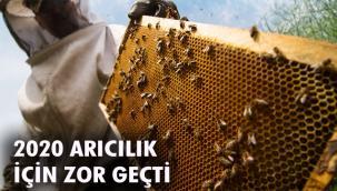 """""""ARICILIK SEKTÖRÜ 2020'DE DİBİ GÖRDÜ"""""""