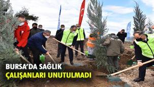 Bursa BB'den Sağlık Kahramanları Ormanı