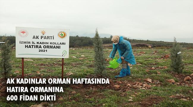 Başkan Büyükdağ, ''Her yıl olduğu gibi bu yıl da fidanlarımızı toprakla buluşturduk''