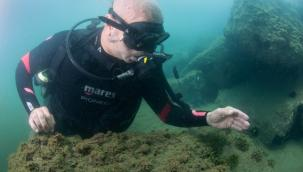 Başkan Soyer Körfez'de tüplü dalış yaptı, sualtındaki yaşamı gözlemledi