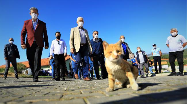 Pandemi Döneminde Can Dostlara İlgi Arttı