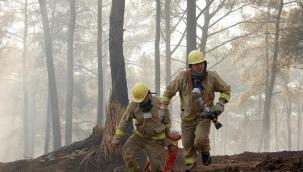 16 günde 54 ilde çıkan 299 orman yangınının tamamı kontrol altına alındı