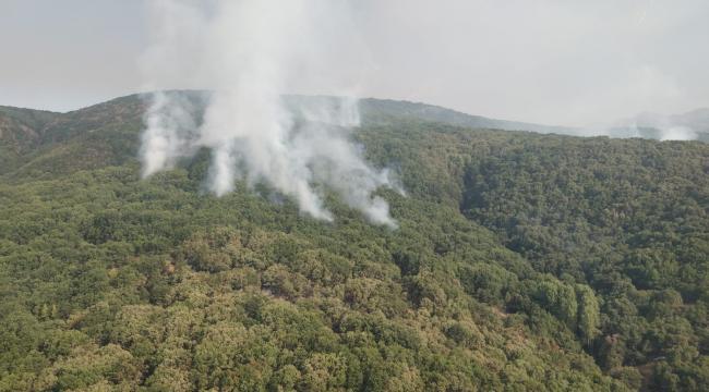 Tunceli'de 2 helikopter ve 1 uçakla yangına müdahale sürüyor